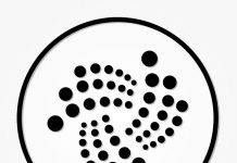 Cryptocurrency van de week IOTA MIOTA